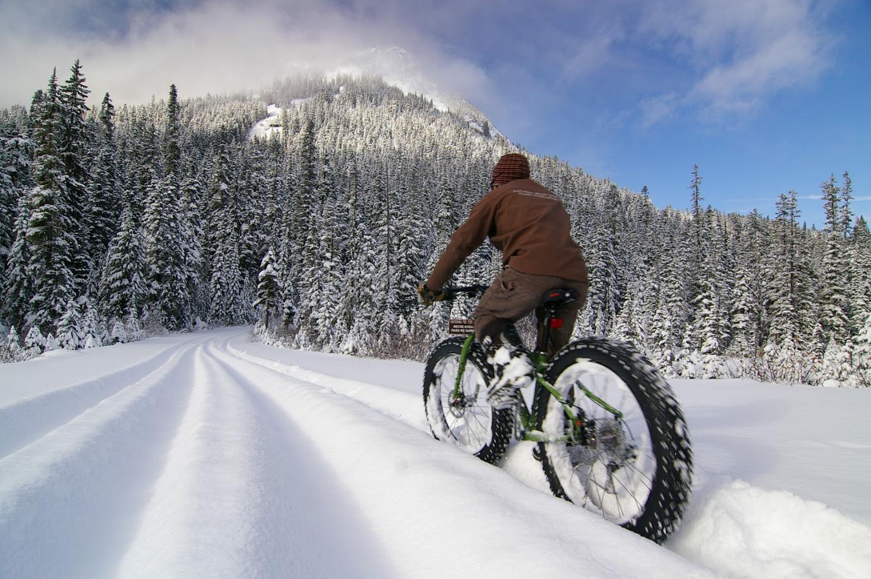 Fatbike fahren der Spaß im Sommer und Winter jetzt in Altensteig mieten